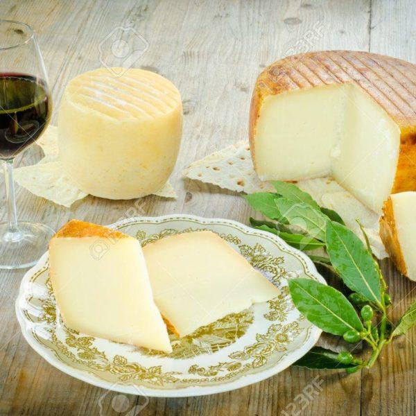 14206889-pecorino-sardo-typical-cheese-from-sardinia